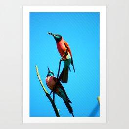 bee-eater 3 Art Print