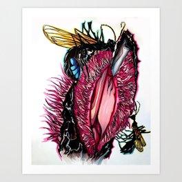 Hydnora africana/Hemipepsis ustulata Art Print