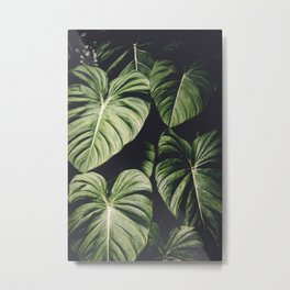 Monstera - Tropical Forest - nature photography Metal Print