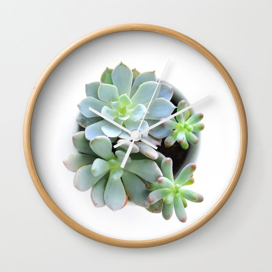 Succulent #1 Wall Clock