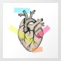 Realistic anatomical vector heart Art Print