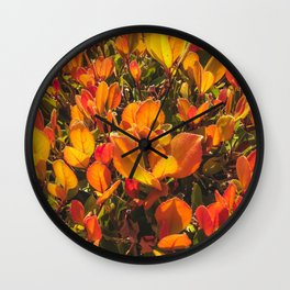 closeup orange leaves plant texture background Wall Clock