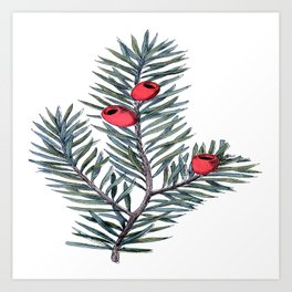Christmas Branch Art Print