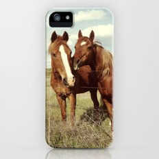 Horse Affection iPhone (5, 5s) Slim Case