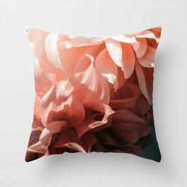 Ombre Light Throw Pillow