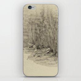 Beautiful river grasses in sepia iPhone Skin