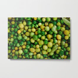 FRUITS - LEMONS - LIMES - NATURE Metal Print
