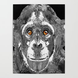 Black And White Art - Monkey Business 2 - By Sharon Cummings Poster