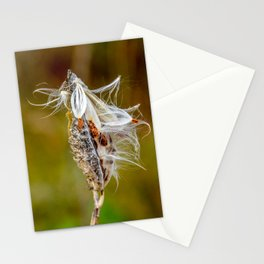 Time to Seed by Teresa Thompson Stationery Cards