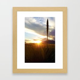 Sunset at Dawn Framed Art Print