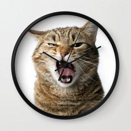 Crazy Cat Wall Clock
