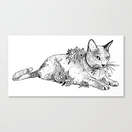 Cat and acacias Canvas Print