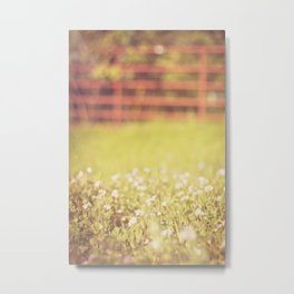 A morning with the wildflowers Metal Print