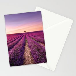 Lavender and lonely trees uphill on sunset. Provence, France Stationery Cards