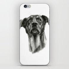 sh-Dog G2009sh-f iPhone & iPod Skin