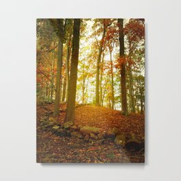 Autumn Woods with Stone Wall Metal Print
