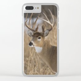Zorro Clear iPhone Case
