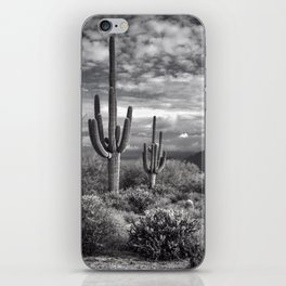 The Sonoran Desert in Black and White iPhone Skin