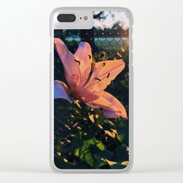 Hibiscus in golden hour Clear iPhone Case
