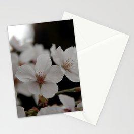 Sakura blossoms up close Stationery Cards