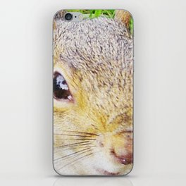 The many faces of Squirrel 5 iPhone Skin