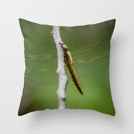 Dragonfly wings, reaching out Throw Pillow
