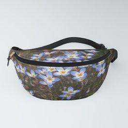 Wild Flowers Bluets Fanny Pack