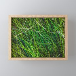 closeup green grass field texture abstract background Framed Mini Art Print