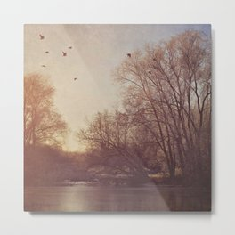 Birds take flight over lake on a winters morning. Metal Print