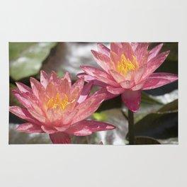 Longwood Gardens - Spring Series 299 Rug
