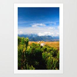 Autumn mountain scenery Art Print