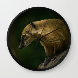 Coati On A Tree Wall Clock