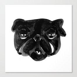 Irritated Sleepy Pug Dog Canvas Print