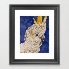 Sulphur Crested Cockatoo Framed Art Print