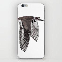 Vociferus peruvianus - Charadrius - Killdeer - Chorlo gritón iPhone Skin