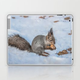Hard nut to crack Laptop & iPad Skin