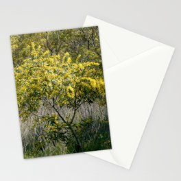 Flowering Acacia Tree Stationery Cards