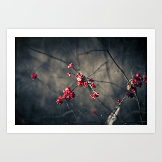 fruits of winter Art Print