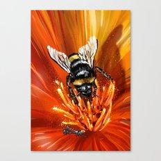 Bee on flower 1 Canvas Print