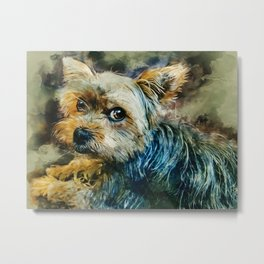 Yorkshire Terrier Metal Print