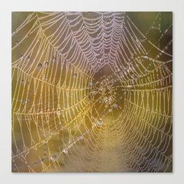 Double Spider Web Canvas Print