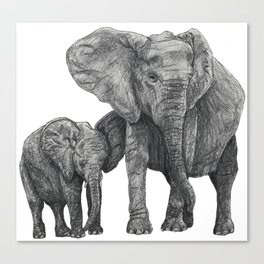 African Elephant and Calf Canvas Print