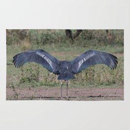 Marabou Stork, Serengeti national park, Tanzania Rug