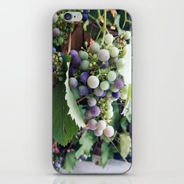 grape iPhone Skin
