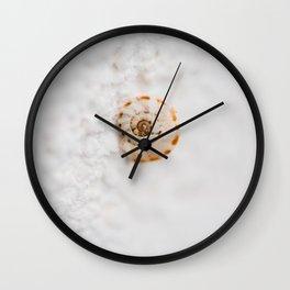 SMALL SNAIL Wall Clock