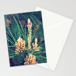 What could nature wear today II? Stationery Cards