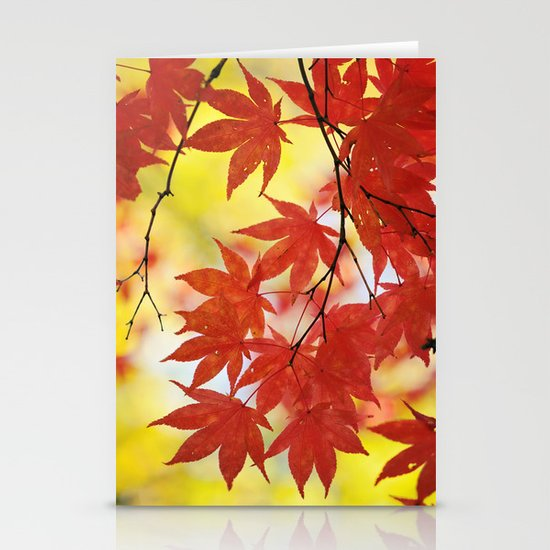 Fall foliage Stationery Cards