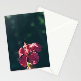 Hibiscus in Mexico Stationery Cards