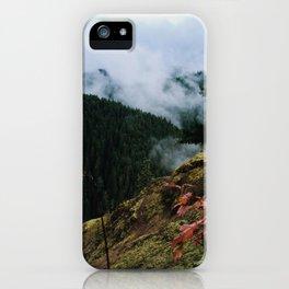 Salmon-Huckleberry Wilderness iPhone Case