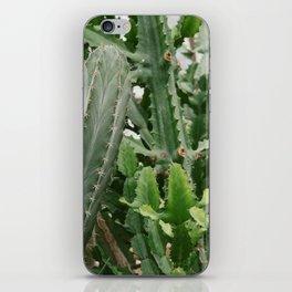 Botanical Cactus iPhone Skin